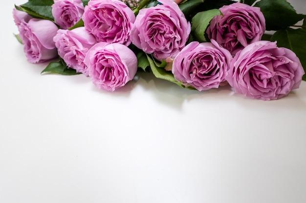Fiori di rose rosa sulla parte superiore di uno sfondo bianco. simbolo di eleganza, affetto e raffinatezza. concetto di spazio libero