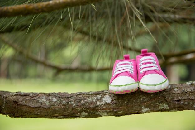 Sneaker rosa, scarpe bambino in un ramo