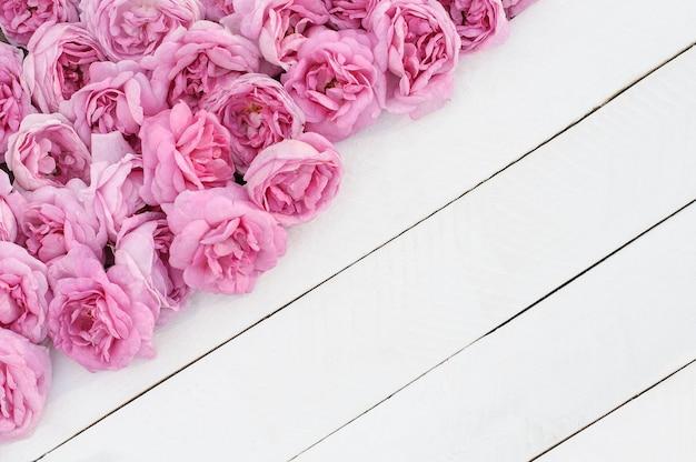 Fiori di rosa tea rosa su tavole di legno bianco