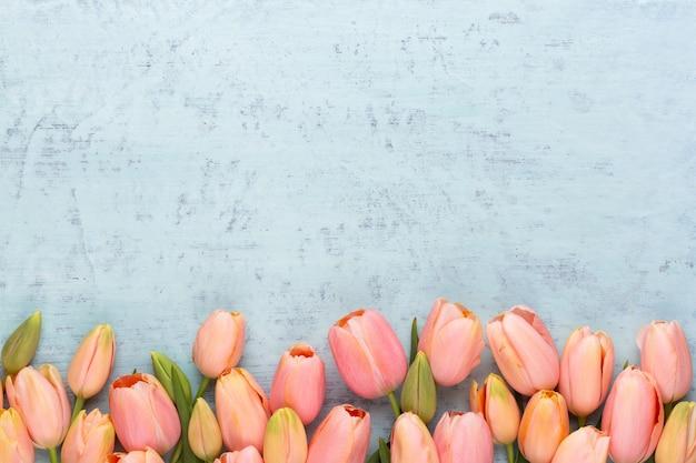 Tulipano rosa sullo sfondo in legno d'epoca