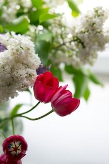 Tulipani rosa su uno sfondo di lillà bianchi sulla finestra