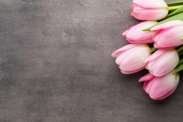Tulipani rosa sul grigio