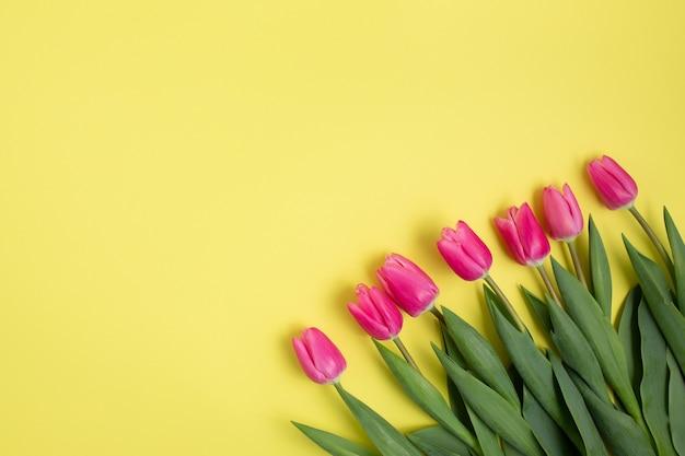 Tulipani rosa su un giallo