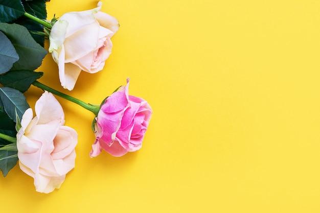 Rose rosa e bianche su giallo brillante