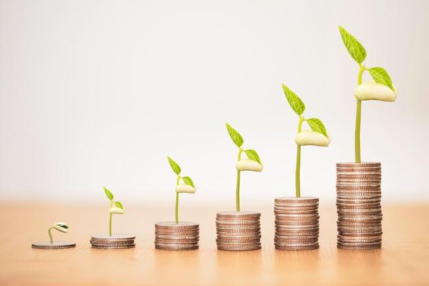 Pianta incandescente su monete impilabili, dividendo di deposito bancario e concetto di investimento azionario.