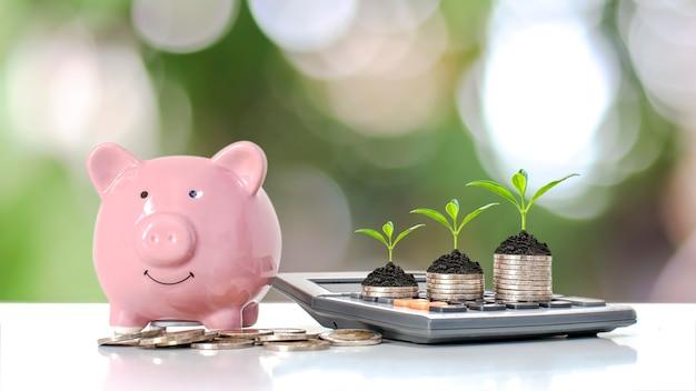 Pianta un albero verde su un mucchio di soldi e una calcolatrice per la crescita finanziaria e idee per risparmiare denaro.