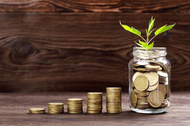 Pianta che cresce in barattolo di vetro delle monete per soldi