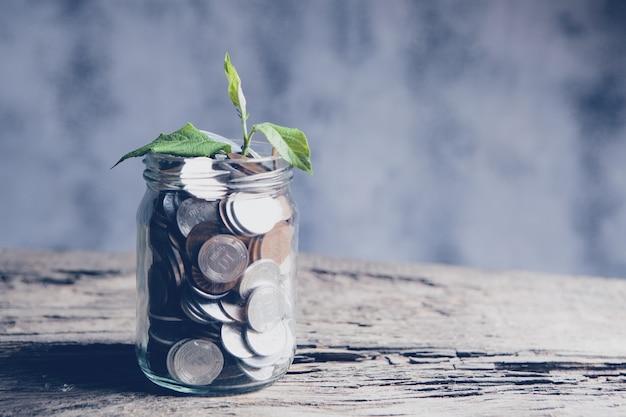 Pianta che cresce fuori un barattolo di monete sulla tavola di legno - concetto di crescita degli investimenti