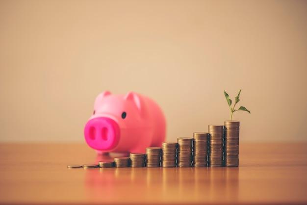 L'impianto sta crescendo dal risparmio per il risparmio di denaro