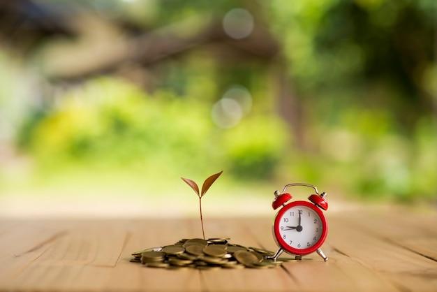 L'impianto sta crescendo dal risparmio di denaro per il risparmio di denaro concetto