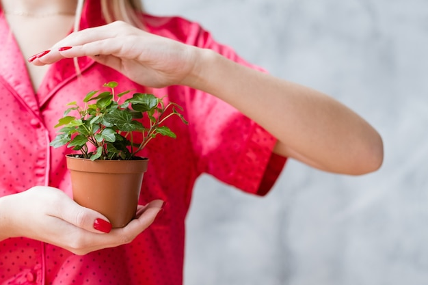 Concetto di protezione delle piante. donna che copre la pianta d'appartamento con la mano.
