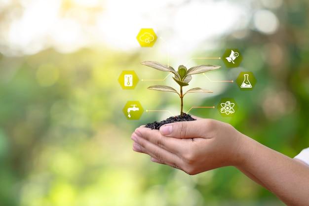 Icona dei fattori essenziali di crescita di piante e alberi sulle mani dell'agricoltore