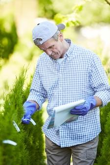 Lavoratore della piantagione che ispeziona gli alberi