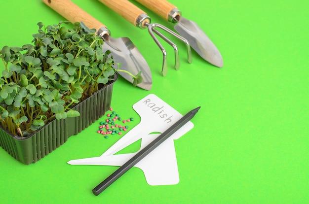 Piantare microgreens. confezione con semi di ravanello. attrezzi da giardino per piantare piante. foto di studio