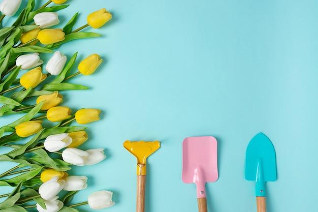 Piantare fiori primaverili attrezzi da giardinaggio tulipani gialli bianchi copia spazio vista dall'alto scoop sfondo blu concetto estivo