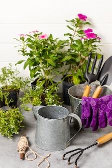 Utensili da giardinaggio piante da vicino