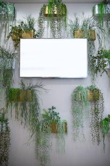 Tv al plasma sulla parete della stanza, tv al plasma appesa al muro, intorno ai fiori