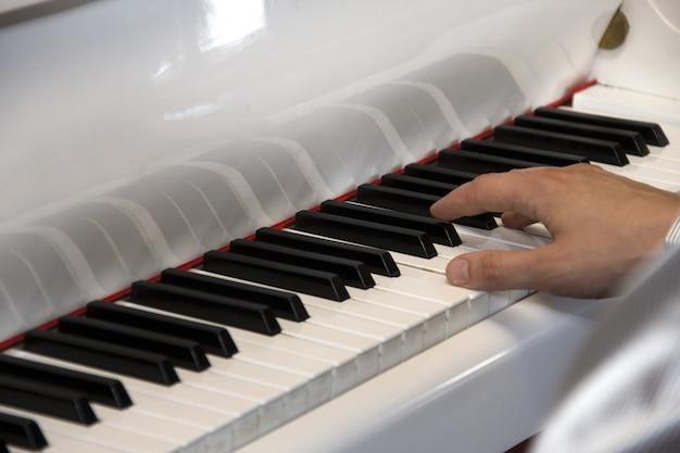 Suonare il pianoforte. dita sulla tastiera