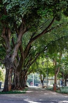 Plaza dr. pedro ludovico teixeira nella città di goiania