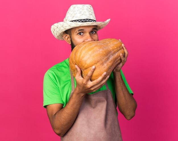 Felice giovane giardiniere afro-americano che indossa un cappello da giardinaggio che tiene e morsi di zucca isolati su una parete rosa