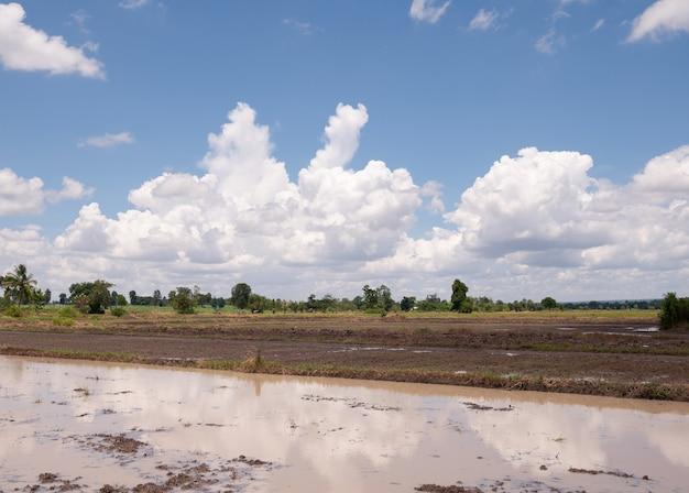 Campo arato pronto per la semina e il cielo blu