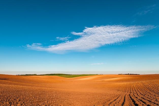 Campo arato in primavera con cielo blu.