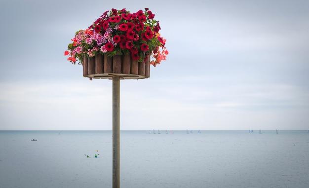 Palo con fiori di fronte al mare con nuvole all'orizzonte