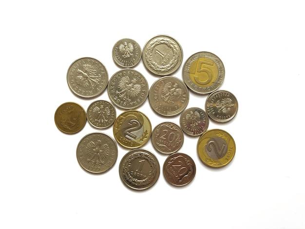 Zloty polacco monete su sfondo bianco.chiuda sulla fotografia.