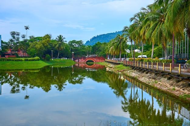 Stagno nel parco verde sull'isola tropicale. splendido scenario naturale, luogo in cui riposare. langkawi, malesia - 07.18.2020