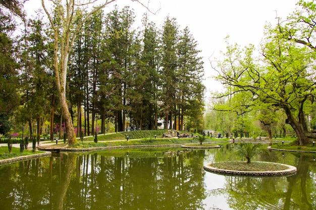 Stagno nel parco, giardino botanico zugdidi in georgia. primavera.