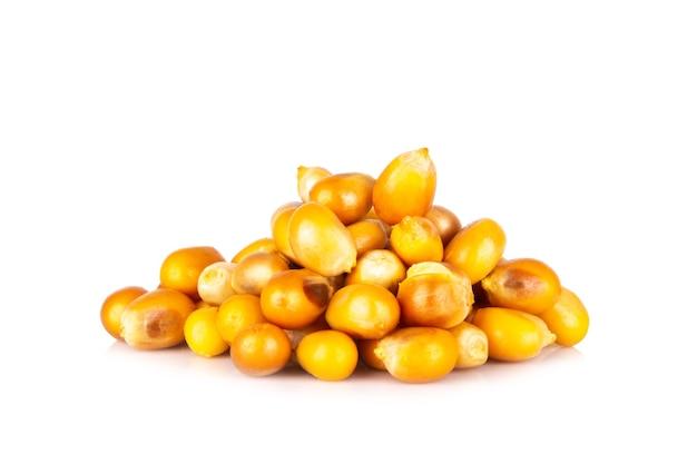 Semi di popcorn isolati su sfondo bianco.