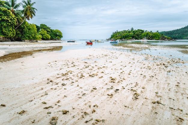 Laguna di port glaud al tempo della marea, isola di mahe, seychelles.
