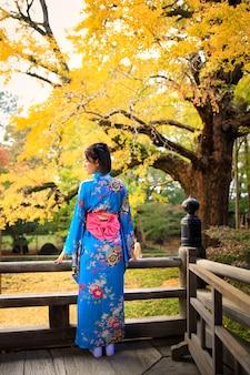 Ritratto della donna asiatica che porta kimono blu giapponese nel parco alla stagione di autunno nel giappone