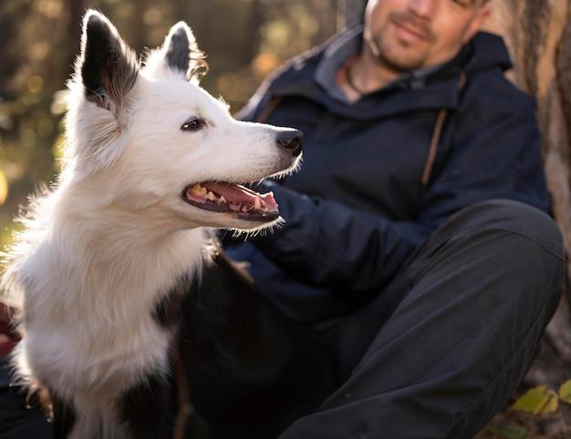 Ritratto di bel cane bianco e nero