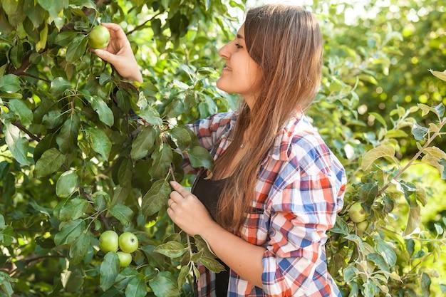 Ritratto di bella donna che raccoglie mela dall'albero al giorno d'estate