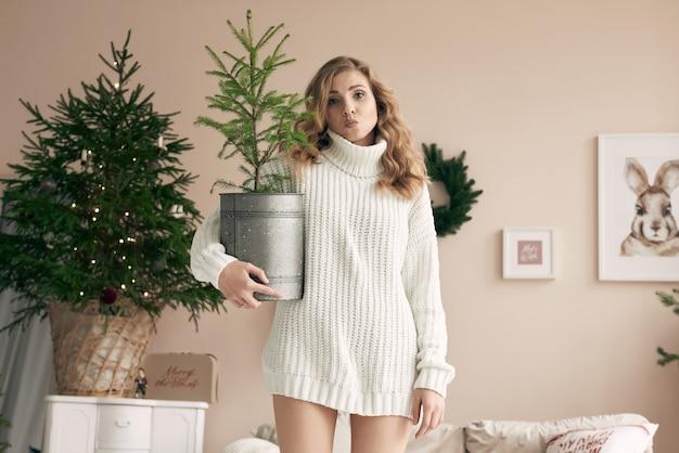 Ritratto di donna bionda splendida in maglione di lana bianco in posa con un abete in vaso in interni decorati accoglienti chiari