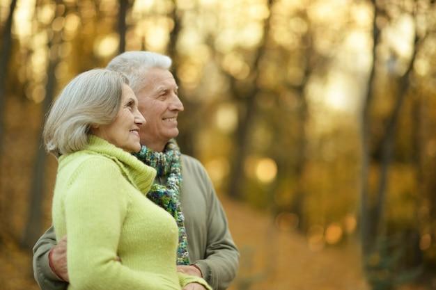 Ritratto di felice vecchia coppia al parco d'autunno