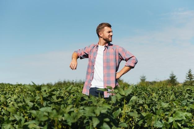 Ritratto di un giovane agricoltore felice che ispeziona le piantagioni di soia. industria agricola