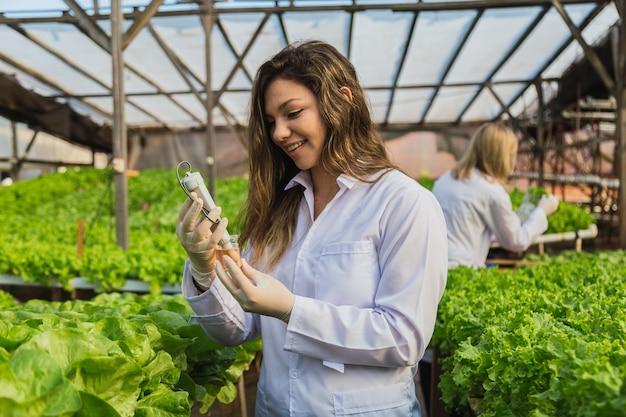 Ritratto di donne professioniste che lavorano in coltura idroponica