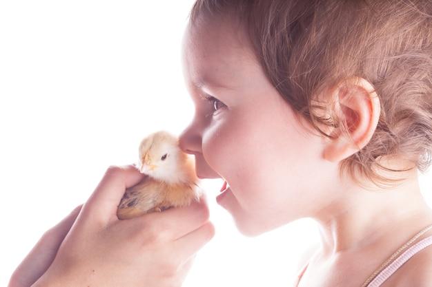 Ritratto di un bambino sorridente che è felice di vedere piccoli polli. avvicinamento