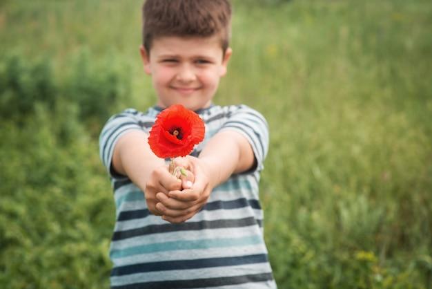 Ritratto di un ragazzo dolce con un fiore di papavero rosso il bambino allunga le mani in avanti con un fiore