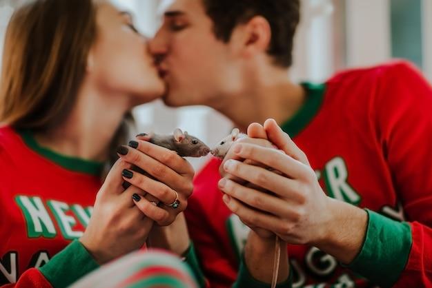 Ritratto di piccoli ratti bianchi e grigi nelle mani della gente contro baciare uomo e donna in pigiama rosso di natale.
