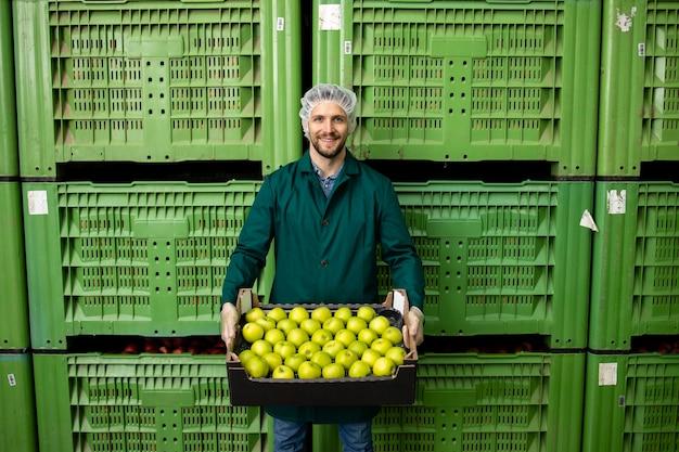 Ritratto del lavoratore che tiene la cassa piena di mele verdi nel magazzino della fabbrica di alimenti biologici.