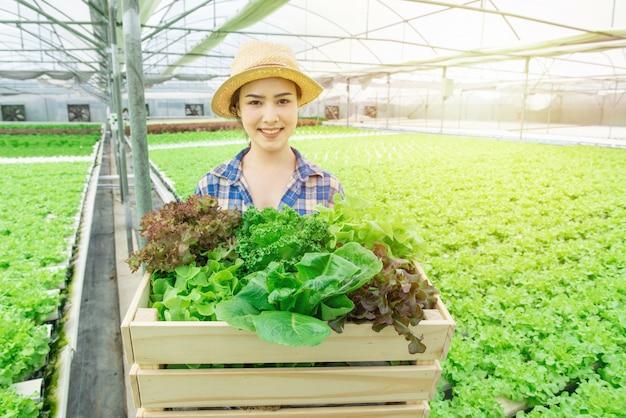 Ritratto di giovane bella donna asiatica attraente che raccoglie l'insalata della verdura fresca dalla sua fattoria di coltura idroponica in canestro di legno della tenuta della mano della serra e sorriso, concetto dell'imprenditore di piccola impresa