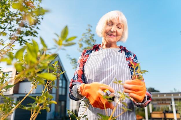 Positivo. sorridente signora piacevole sentirsi bene mentre trascorre una giornata in giardino