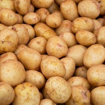 Patate. texture giovane patata bianca vegetale. raccolto autunnale, verdure con amido