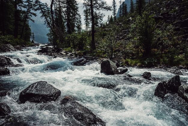 Potente fiume di montagna scorre attraverso la foresta bellissimo paesaggio alpino