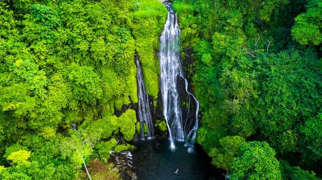 Potente cascata tropicale nella foresta pluviale verde.