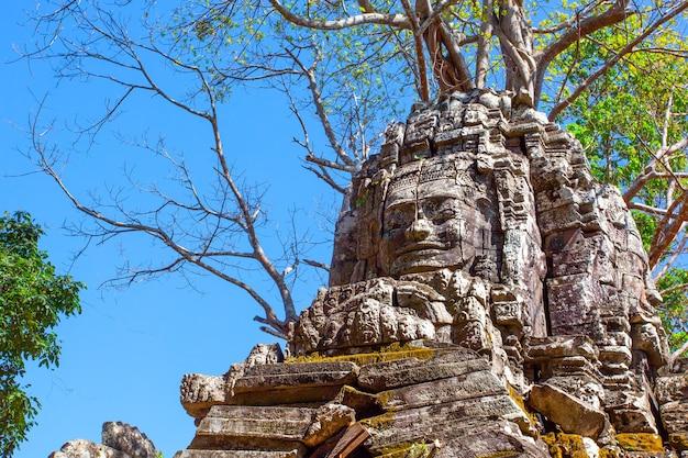 Tempio di preah khan ad angkor wat, cambogia