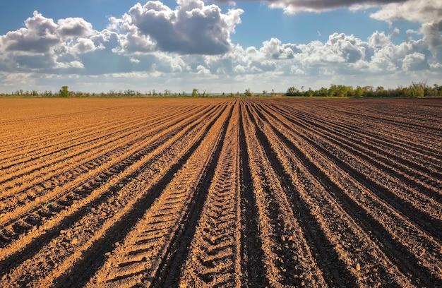 Preparazione del campo per la semina. terreno arato in primavera con cielo nuvoloso blu.